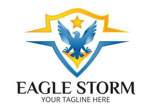 Logo biểu tượng con đại bàng đẹp
